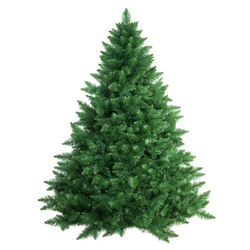 How Long Does It Take To Grow A Christmas Tree.Christmas Trees Bennett S Best Christmas Trees Pumpkins