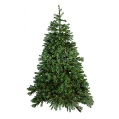 Where Did Christmas Trees Originate.Christmas Trees Bennett S Best Christmas Trees Pumpkins
